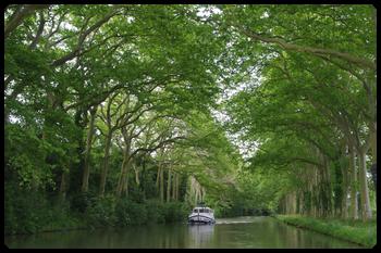 ミディ運河の画像 p1_5